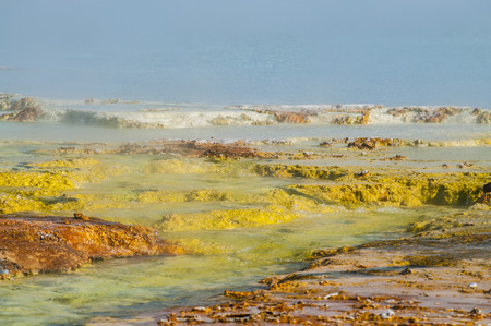 Colorful Layers of microorganisms in the yellowstone geyser. Stock Photo