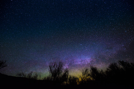 milkyway: Milkyway rising over the trees - Night Landscapes