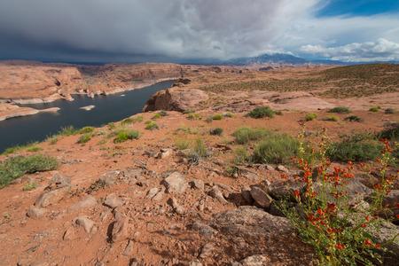 scenary: Lake Powell near Hole in the Rock Escalante Utah