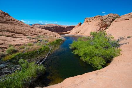 escalante: Small lake oasis in the desert Escalante National  Horizontal composition Stock Photo