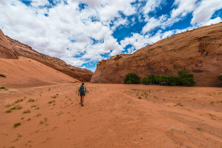 coyote: Dry Fork Narrows of Coyote Gulch