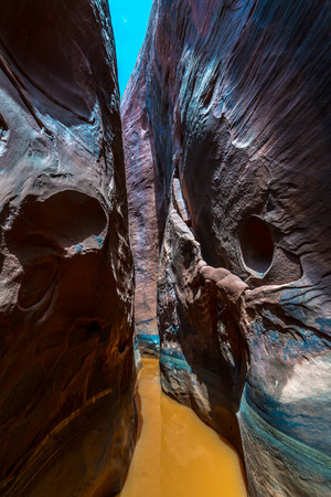slot canyons: Water in the slow Canyon Vertical Composition Utah