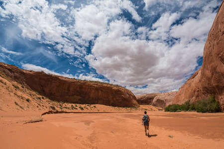 slot canyons: Dry Fork Narrows of Coyote Gulch
