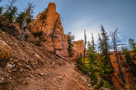 plateau point: Ponderosa Trail looking up Bryce Canyon National Park