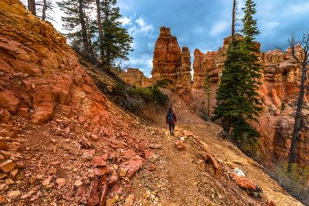 ponderosa: Woman Backpacker hiking down the Ponderosa Canyon Bryce National Park