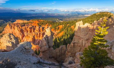 plateau point: Ponderosa Canyon lid by Beautiful Sunset light Bryce Canyon National Park
