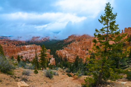 peekaboo: Peek-a-boo Loop Bryce Canyon National Park