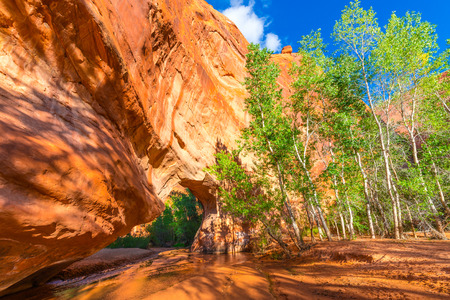 cottonwood canyon: Beautiful Natural Arch in Coyote Gulch Escalante National Stock Photo