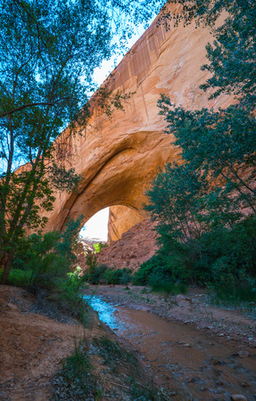 jacob: Natural Creek leading to Jacob Hamblin Arch Coyote Gulch Vertical Composition Stock Photo