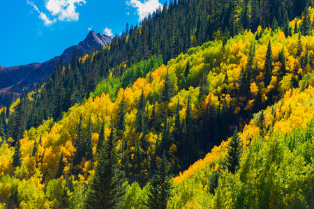 colorado rocky mountains: Multiple Layers of Colors Autumn Fall Peak Colors Colorado Rocky Mountains