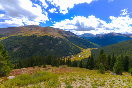 treeline: View from the Independence Pass, Colorado Landscape