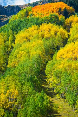 conundrum: Colorado Fall Foliage near Conundrum Hot Springs Trail