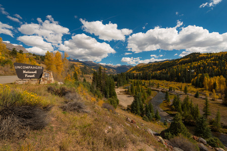 ouray: Uncompahgre National Forest Nice Sunny Day Fall Foliage Stock Photo