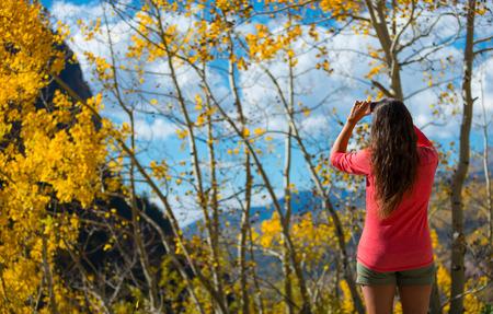 aspen tree: Woman Taking Picture of aspen tree Fall Colors Colorado Landscape Stock Photo