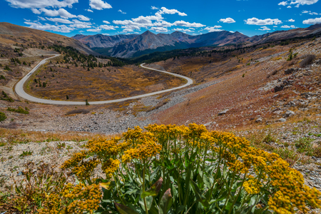 cottonwood: WiView of the road from the top of the Cottonwood Pass Continental Divide Colorado USA