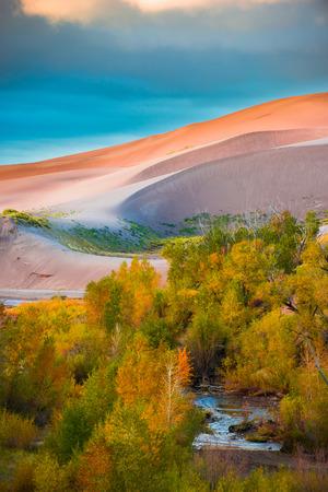 colorado landscape: Beautiful Fall Foliage lit by morning sunlight Great Sand Dunes Colorado Landscape USA