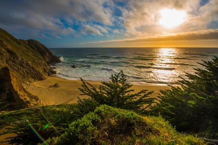 Gris Whale Cove State Beach en Californie Paysage