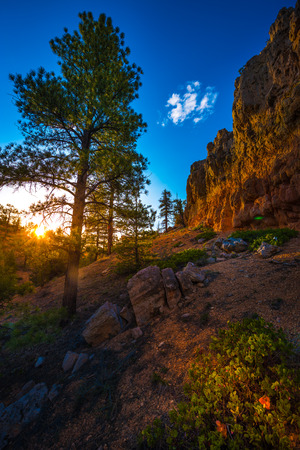 Red Canyon at Sunset near Bryce Panguitch Utah United States
