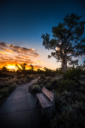 Paved Trail through Devils Orchard Trail Craters of the Moon National Preserve Idaho Vertical Composition Stock Photo