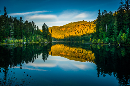 Calm Sunset Reflection Toketee Lake Umpqua River Oregon  Фото со стока