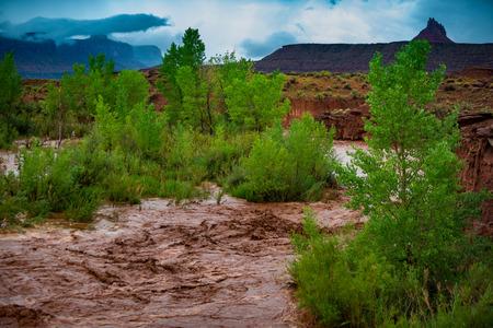 Las aguas de una inundación repentina después de la tormenta fluye a través del distrito de Canyonlands Needle, Utah, EE. Foto de archivo