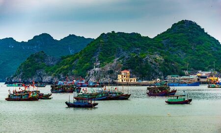 Cat Ba  Vietnam Fishing Boats and Floating Restaurants with Karst Mountains in the Background