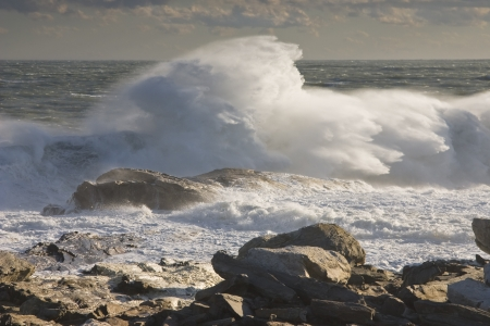 Large waves near Pemaquid Point on the coast of maine  photo
