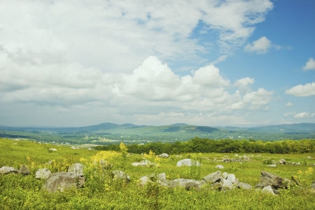 Large blueberry barrens with mountain background in Maine   photo