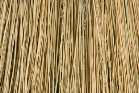 bristles: Close-up of broom bristles,