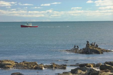 lobster boat: Lobster boat working off Seawall Beach, Mount Desert Island, Maine