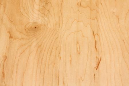 Close-up of white birch wood grain  写真素材