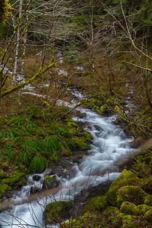 Unknown Creek in Orgon