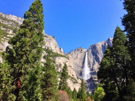 Yosemite Falls in the early morning