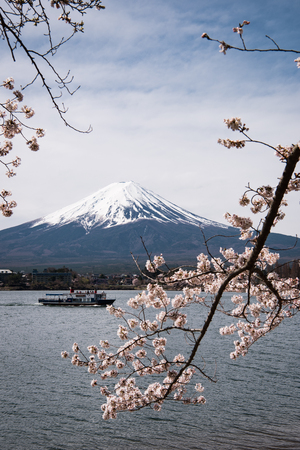 Mt. Fuji over Lake Kawaguchi and Cherry Blossoms Éditoriale