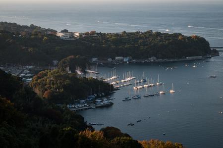 High angle view of a marina Stock fotó
