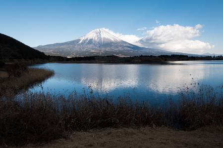 Mt. Fuji Reflected in Lake Tanuki Stock Photo