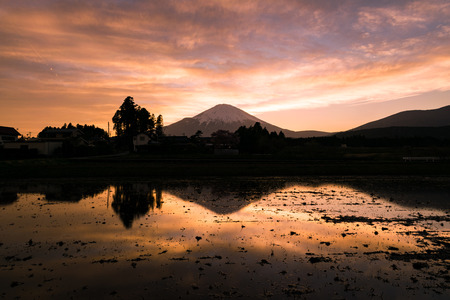 Mt. Fuji Reflected in a Water-Filled Rice Field at Sunset