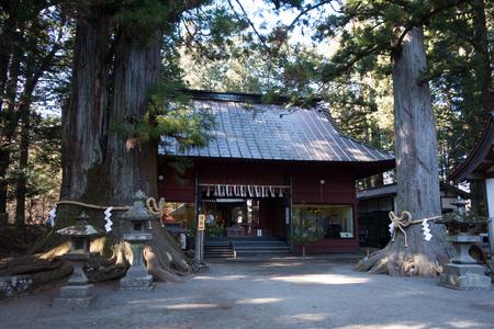 At the shrine in a forest (at the Suwa Jinja Shrine in at the Kitaguchi Hongu Sengen Shrine in Fujiyoshida) Sajtókép