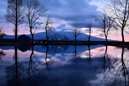 Mt. Fuji Reflected in a Pond at Dawn