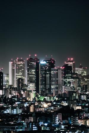 Tokyo Skyline at Night (Nishi Shinjuku District)
