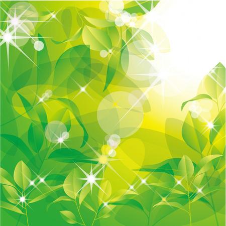 新鮮な緑の背景イラスト  イラスト・ベクター素材