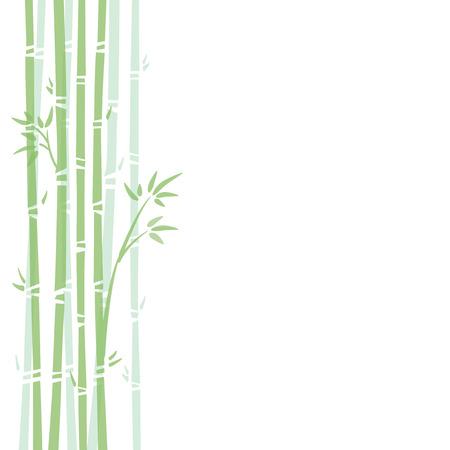 Background illustration of bamboo