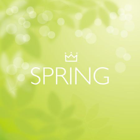背景をぼかした写真緑のベクトル イラスト  イラスト・ベクター素材