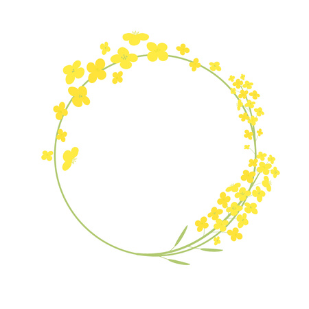 Vector canola flowers frame illustration