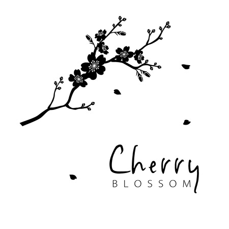 Cherry blossom branch silhouette illustration