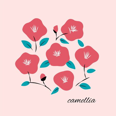 Vector illustration of hand drawn camellia flowers