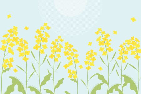Canola flowers illustration on blue background Ilustração