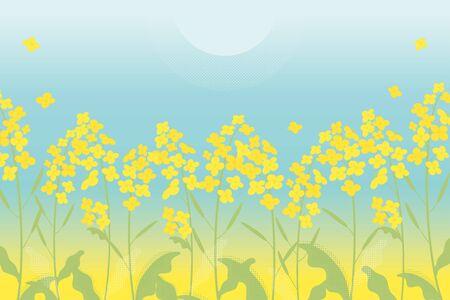Rapsblumenillustration auf blauem Steigungshintergrund