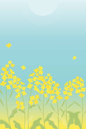 Canola flowers illustration on blue gradient background