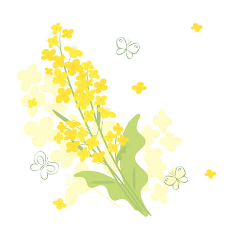 Canola flowers and butterfly background illustration